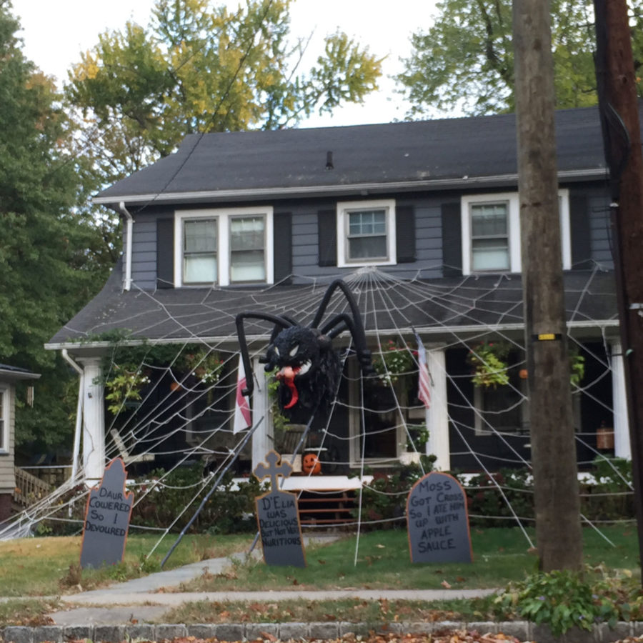 Spider decoration for Halloween