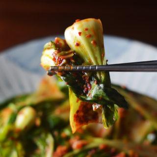 Quick Kimchi (Geotjori)